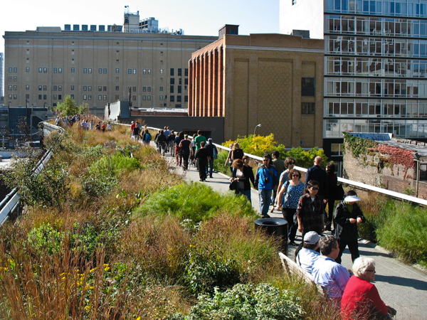 High Line Savanna