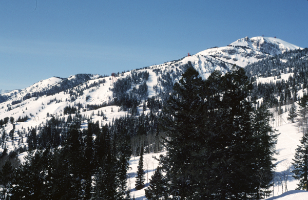 Rendezvous Mountain