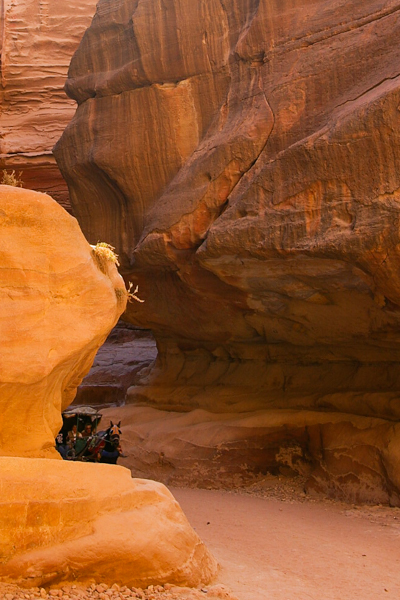 Chariot in the siq