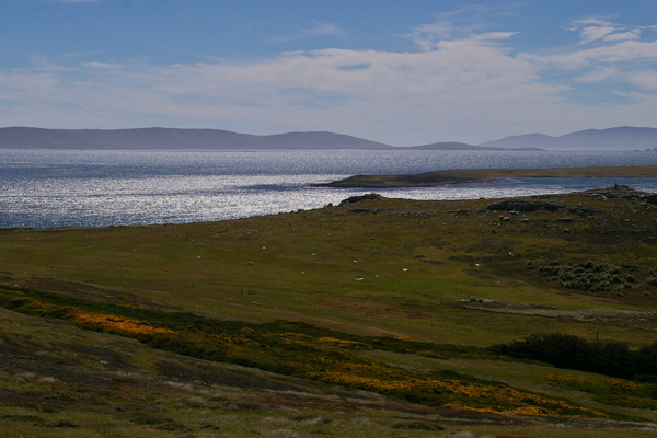 Falklands Vista